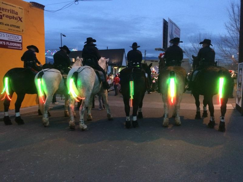 Tail Lights Get A New Meaning Check Out These Horses