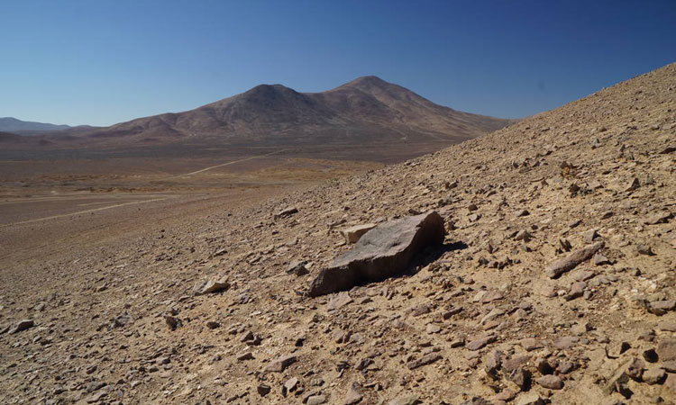 Life in Chile's Atacama Desert could mean life on Mars