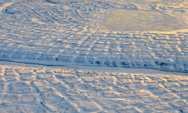 Increase in carbon emissions from Alaskan tundra